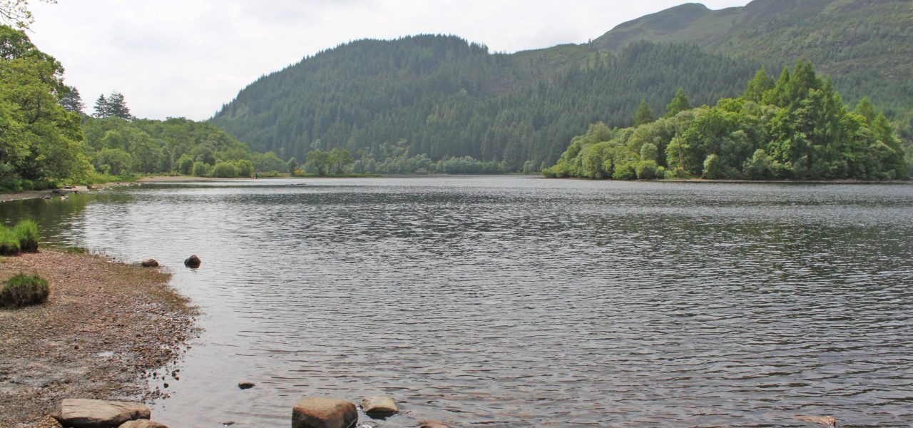 loch-chon-with-wooded-shores-and-island-prominent-seen-from-the-campsite-beach