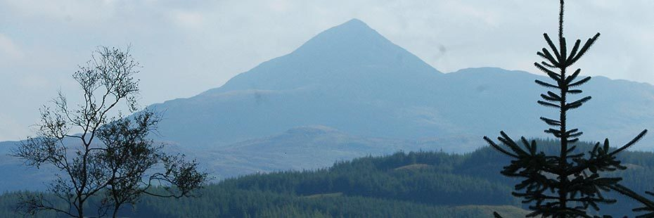 pyramidical-shape-of-ben-lomond-above-forests-as-seen-from-glen-loin-bike-circuit