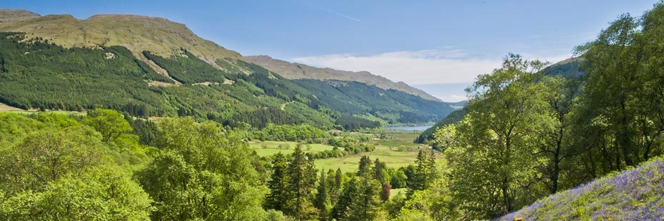 view-of-loch-eck-and-surrounding-hills-from-glenbranter-sunny-day-with-lush-greens-and-blue-from-bluebells