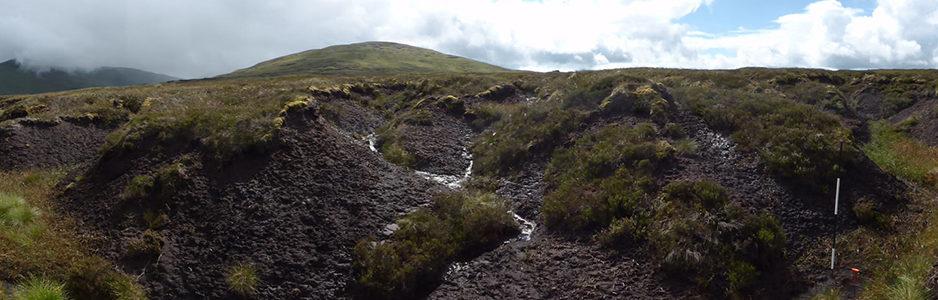 peatland-in-poor-condition